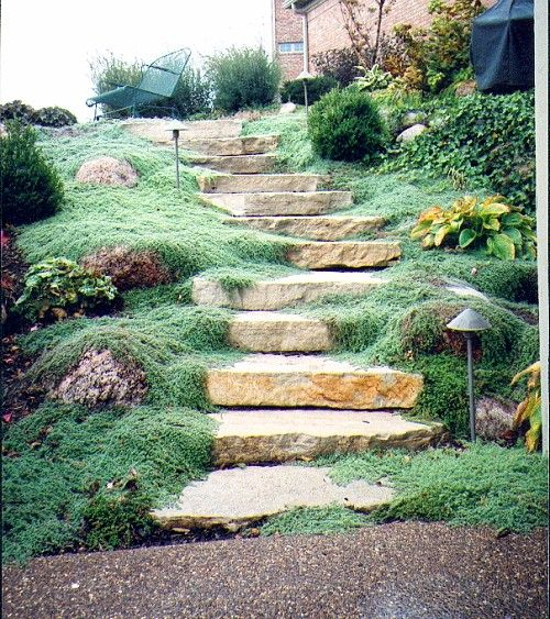 Backyard Steps Ideas: Stone Stairs For The Hill In The Side Yard Some Day
