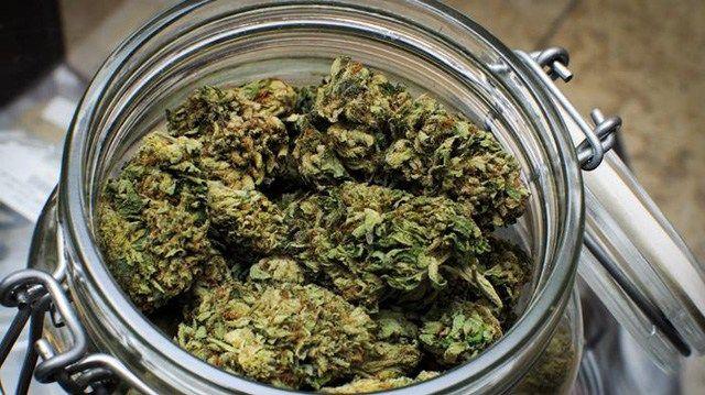 Die DCI Cannabis Institut GmbH (München) geht nach der gesetzlichen Freigabe von Cannabis für schwerkranke Patienten mit dem bundesweit ersten Konzept eines Cannabis-Therapie- und Informations-Cent…