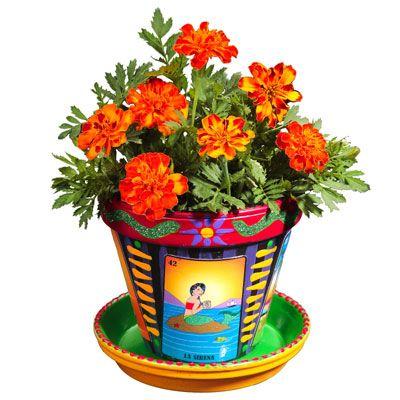 Beautiful Flower Pots | Garden Ideas