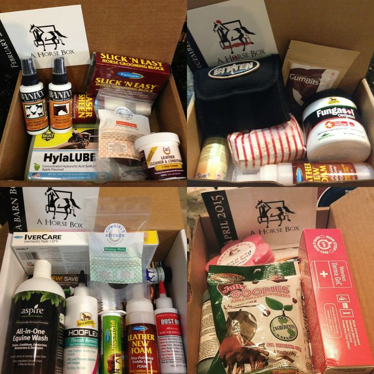 Order a box of goodies for your horse today at —> www.ahorsebox.com and spoil your horses with treats, shampoos, fly repellants and other wholesome products. A portion of each purchase goes to help support horses in need!