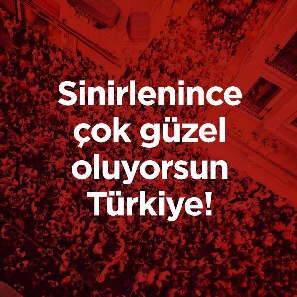 #direngezi #occupygezi #turkiye