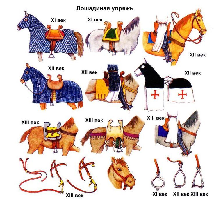 Kingdom of Jerusalem - Arms and Armour. ♣Regnum Hierosolimitanum  (Latin). ♣Roiaume de Jherusalem  (Old French). ♣Regno di Gerusalemme  (Italian). ♣Βασίλειον τῶν Ἱεροσολύμων (Ancient Greek).