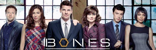 Assistir Série Bones Online Legendado e Dublado Completo - Ver Series Online