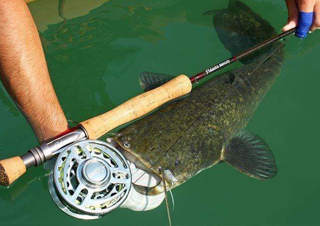 Carrete de pesca a mosca - Como elegir el mejor carrete de pesca