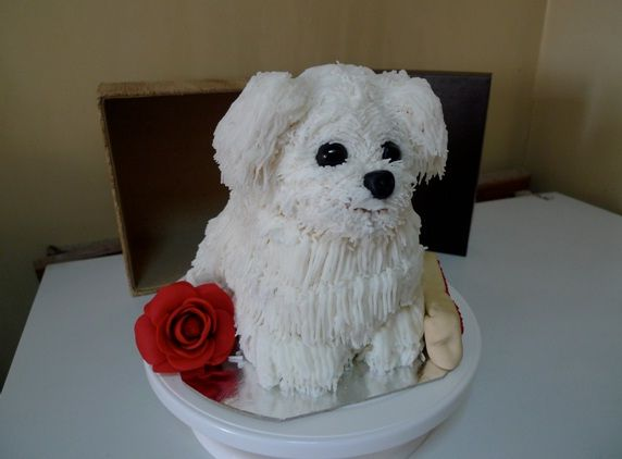 Dog Cake Decor : 382 best images about Bichon cake decorating on Pinterest Birthday cakes, Puppys and Puppy dog ...