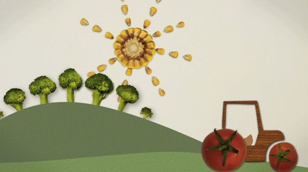 Michael Pollan's Food Rules Animated in Stop-Motion | Brain Pickings