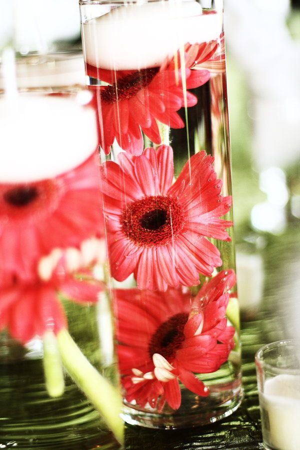 Wedding centerpieces... so easy to make! Use wholesale wedding gerberas, tall vase and floating candles! http://www.bridesign.com/wholesale-gerbera-daisies-online