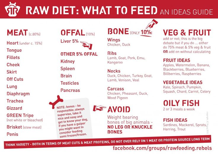 Quick Guide to Raw Feeding for Woofers | Rawfeeding Rebels