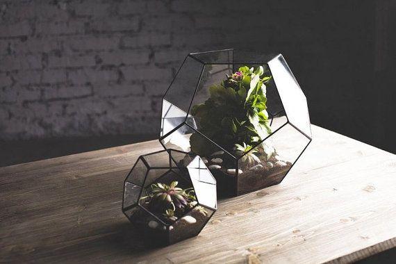 Gem-like terrariums for the gardener.