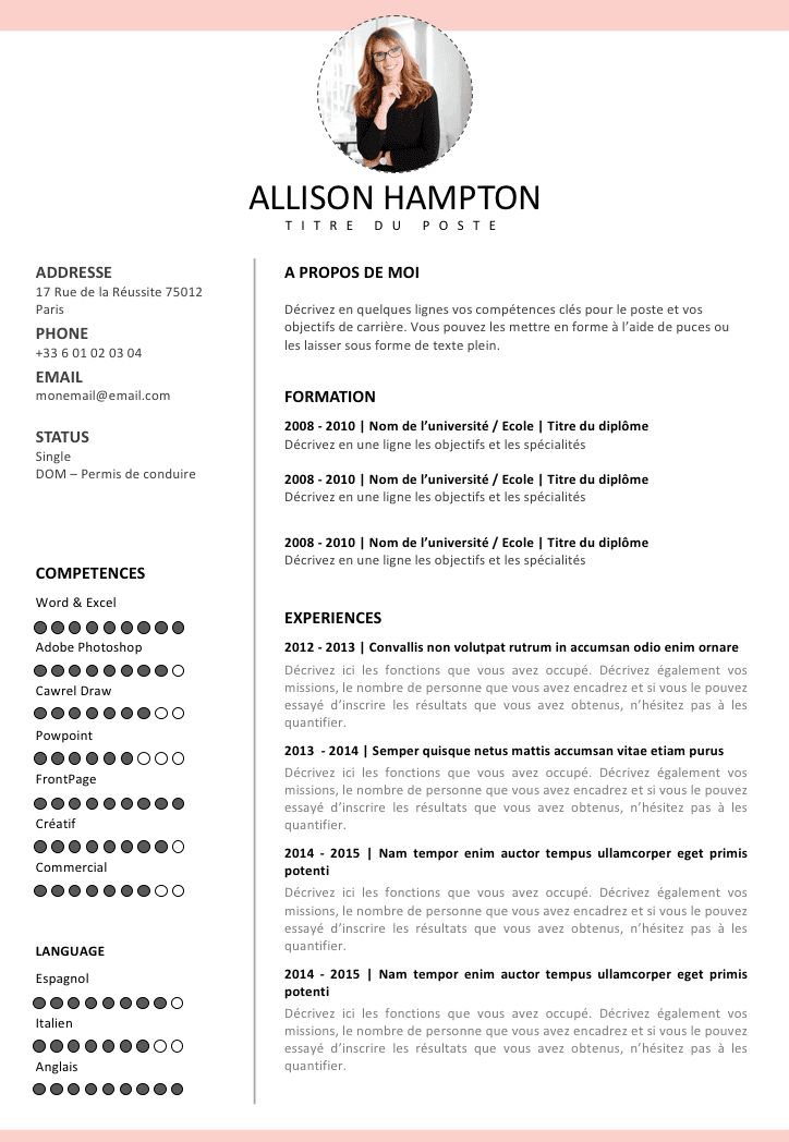 8 best Template Cv Free images on Pinterest Curriculum, Cv - agile resume