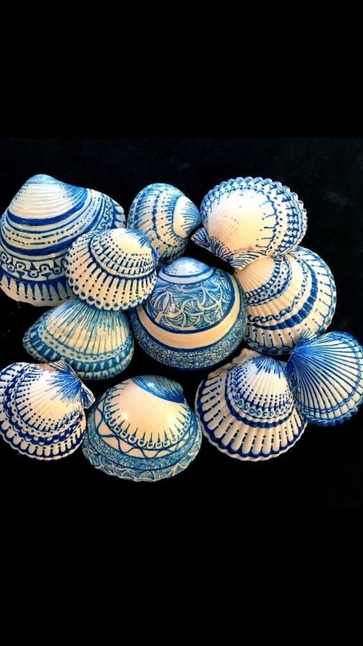 Blue and white painted shells