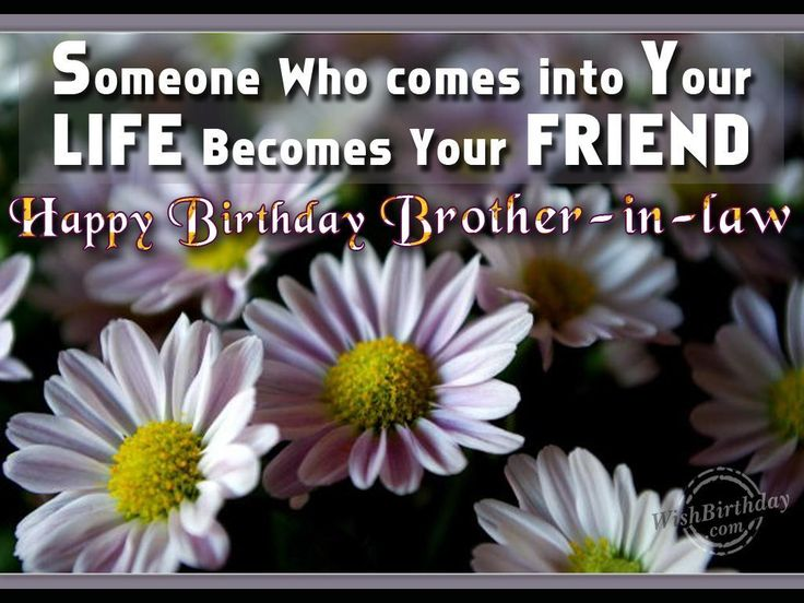 Funny Birthday Memes For Brother In Law : Best happy birthday images happy birthday