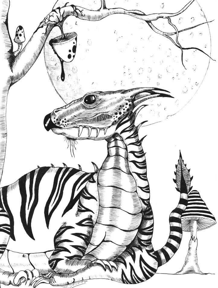 Animorphia Coloring Coloring Pages Ideas Coloring Pages
