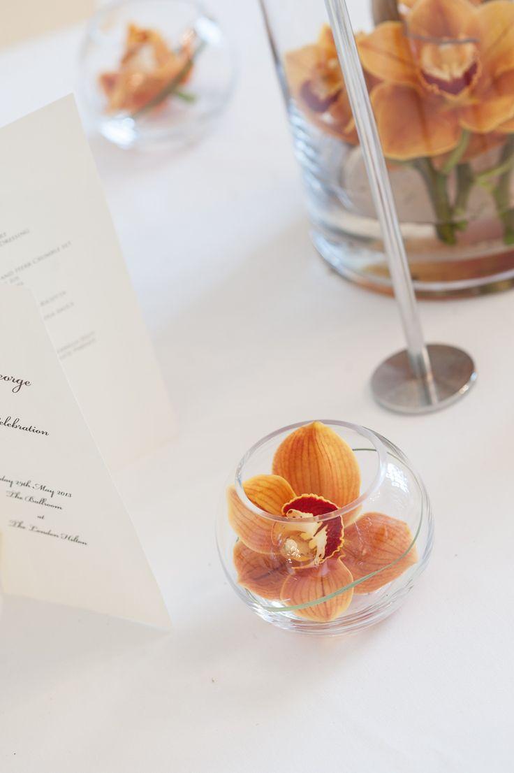 9 best Goldfish Bowls images on Pinterest   Bowls, Serving bowls and ...