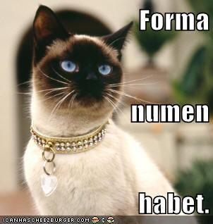 Forma numen habet.    Beauty has a divine power.