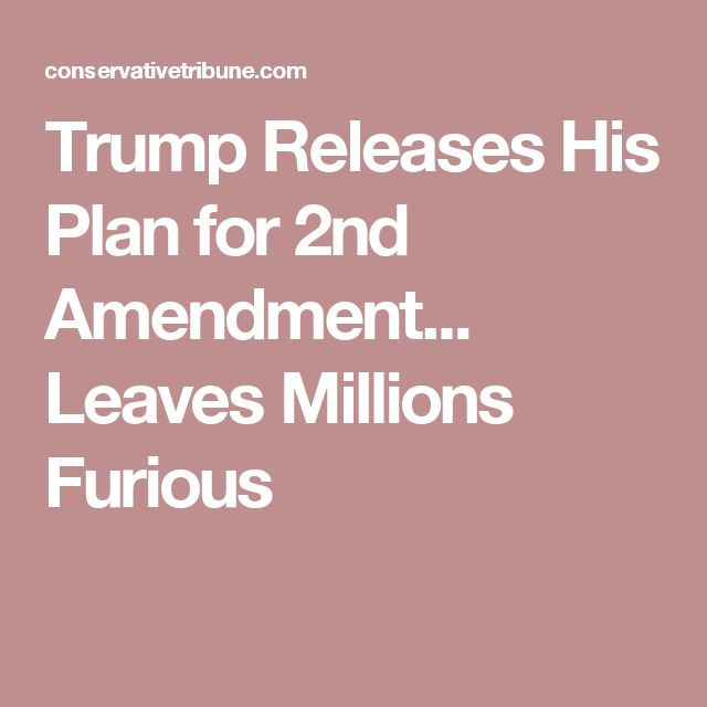 Trump Releases His Plan for 2nd Amendment... Leaves Millions Furious