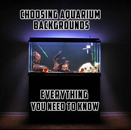 Good guide explaining the different types of aquarium backgrounds: http://www.aquarium-backgrounds.net/choosing-aquarium-backgrounds-need-know/