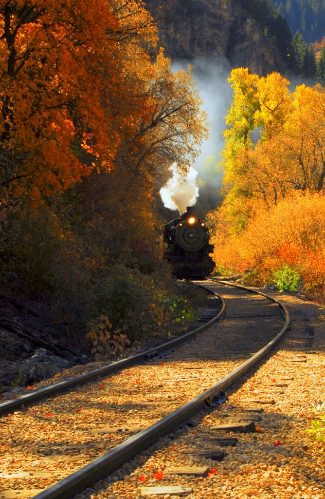 Trilhos & Folhas do outono ✯ Railing & Autumn leafs # Trem # Train # Locomotiva a vapor # Steam locomotive