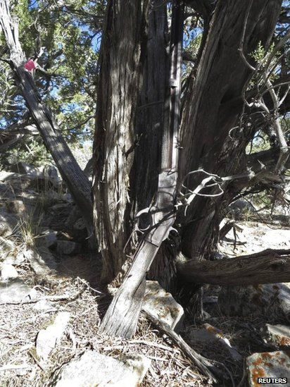 The rifle from 1882 as it was found in the Great Basin National Park