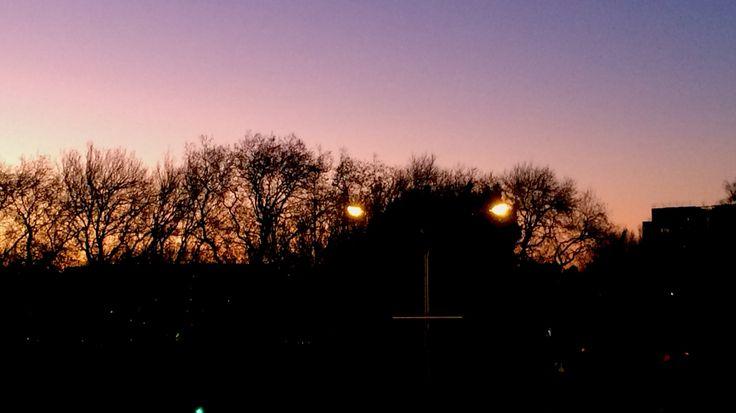 Victoria Park @ sunset