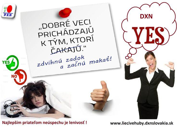 Neúspech neexistuje...existujú len príliš malé sny ! http://liecivehuby.dxnslovakia.sk/ http://lecivehouby.dxnczech.cz/