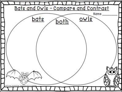 Teaching Similarities and Differences: Bats & Owls—with