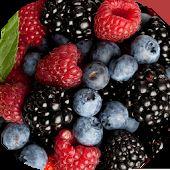 Лесные ягоды живые обои