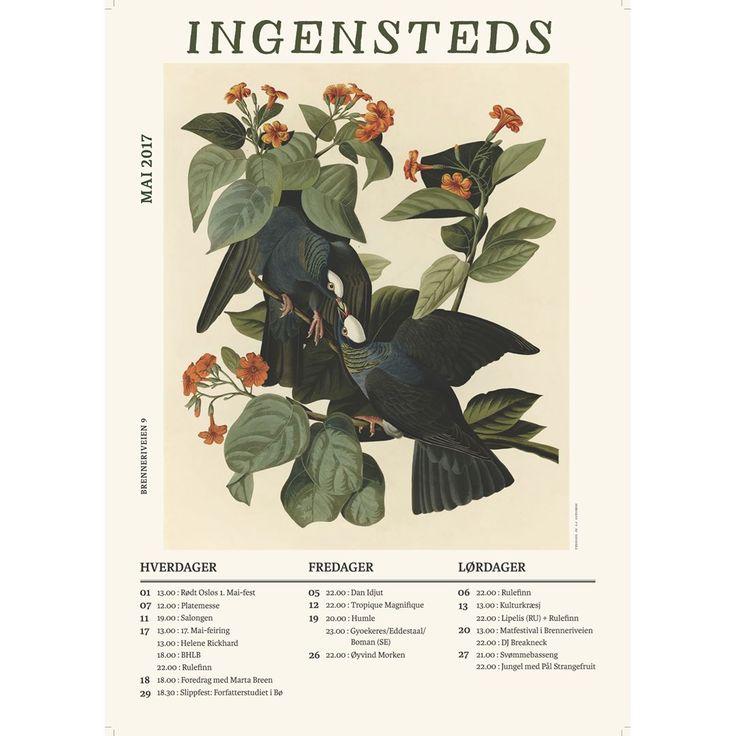 Program for May 2017 Ingensteds, Oslo. Birds, art, posters. Nighlife, concerts