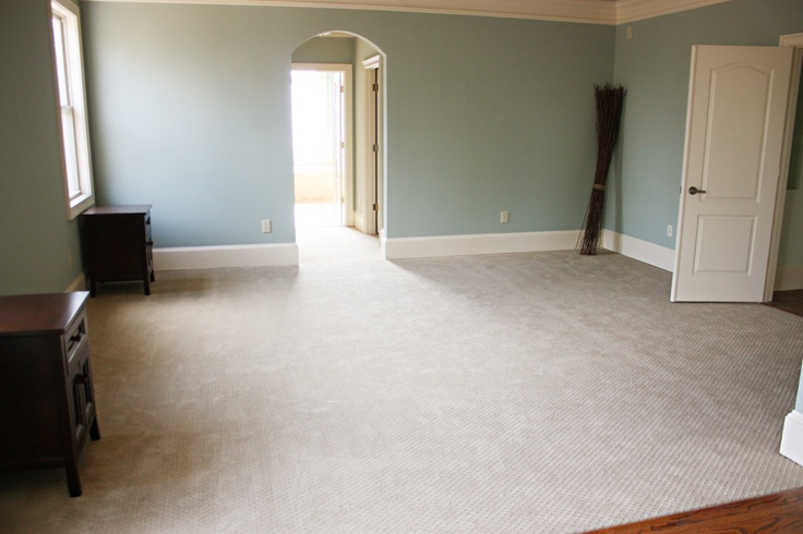 carpet: Martha Stewart Ash Bark.  I like that it is beige with grey undertones.