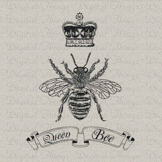 Best 25+ Queen Bee Quotes Ideas On Pinterest