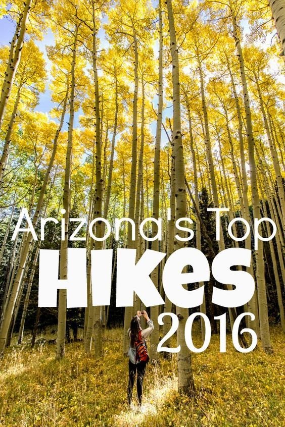 Arizona Hikers Guide writes about 5 of the top hikes in Arizona. You'll want to add these trails to your Arizona travel plans. Great for a summer trip with Dad.