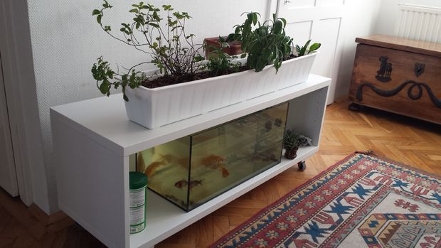 Ikea Shelf Turned Into An Indoor Aquaponics System Other