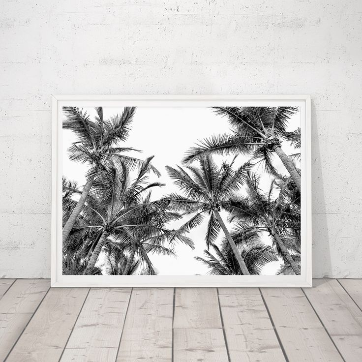 Have you started your Xmas shopping? I have but only just, I think I'm in denial that it so close! These babies would be a perfect gift for any beach/palm/ocean lover. I'll be taking orders up until about the 10th Dec (which is really soon 🙀) to ensure they are at their destination by Xmas. All images are original photographic art, shot by me and professionally printed on premium Lustre photo paper. Sizes available on my website are standard A3-A1 or I can custom size on request. Check o...