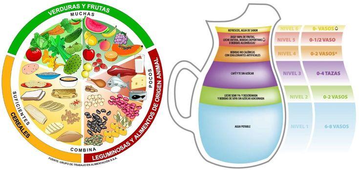 Una Sana Alimentación: Video: El Plato del Buen Comer y la Jarra ...