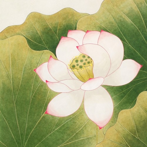 Hana Seo, Lotus, 2013