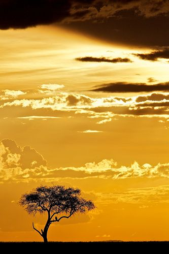 ....sunrise sunset ....