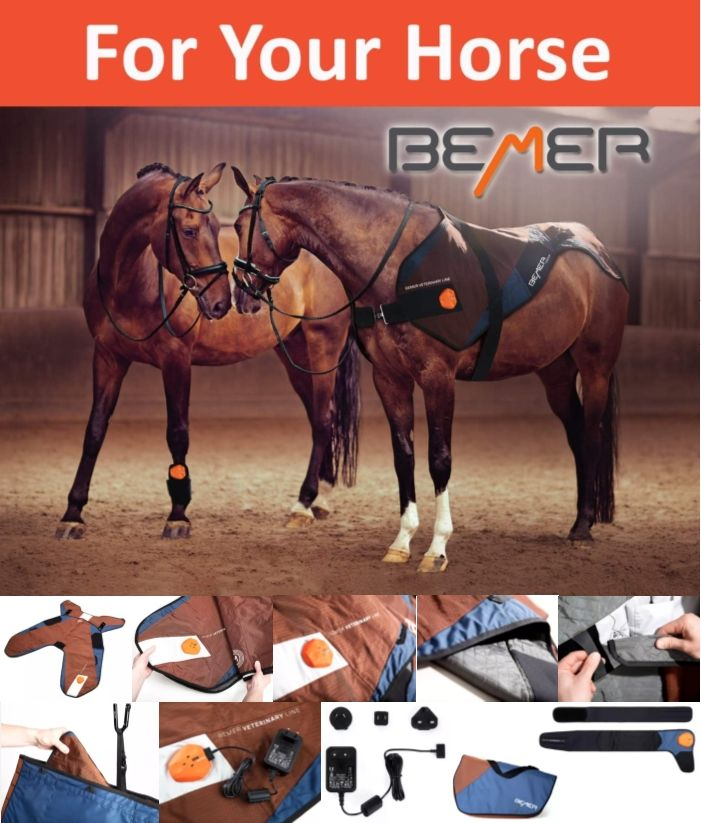 Bemer Vet Pemf Therapy Craniosacral Therapy Vets