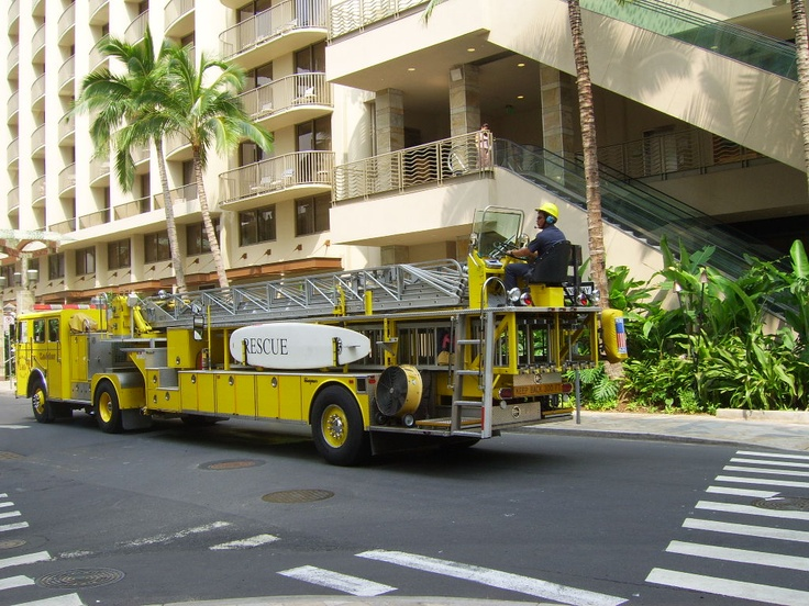 Ladder Company In Hi Notice The Paddle Board For Surf
