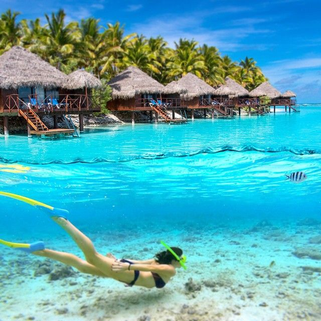 Paradise in the South Pacific