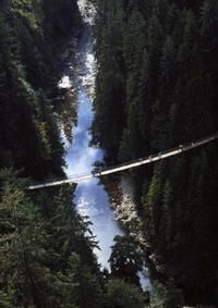 Vancouver Shore Excursion: Pre- Or Post-Cruise North Shore Tour #vancouver #shoreexcursions