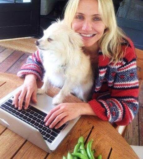 Cameron Diaz holt sich zum E-Mail-Schreiben tierische Unterstützung. Süß!´