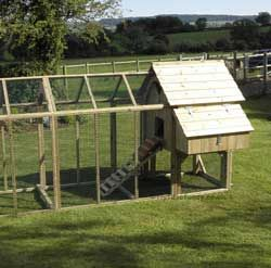 Long Legged Maggie's 6 Hen House with 6ft Run