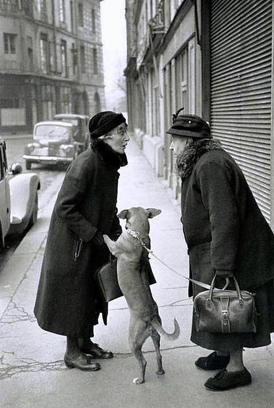 Place Dauphine Paris 1952, Henri Cartier-Bresson