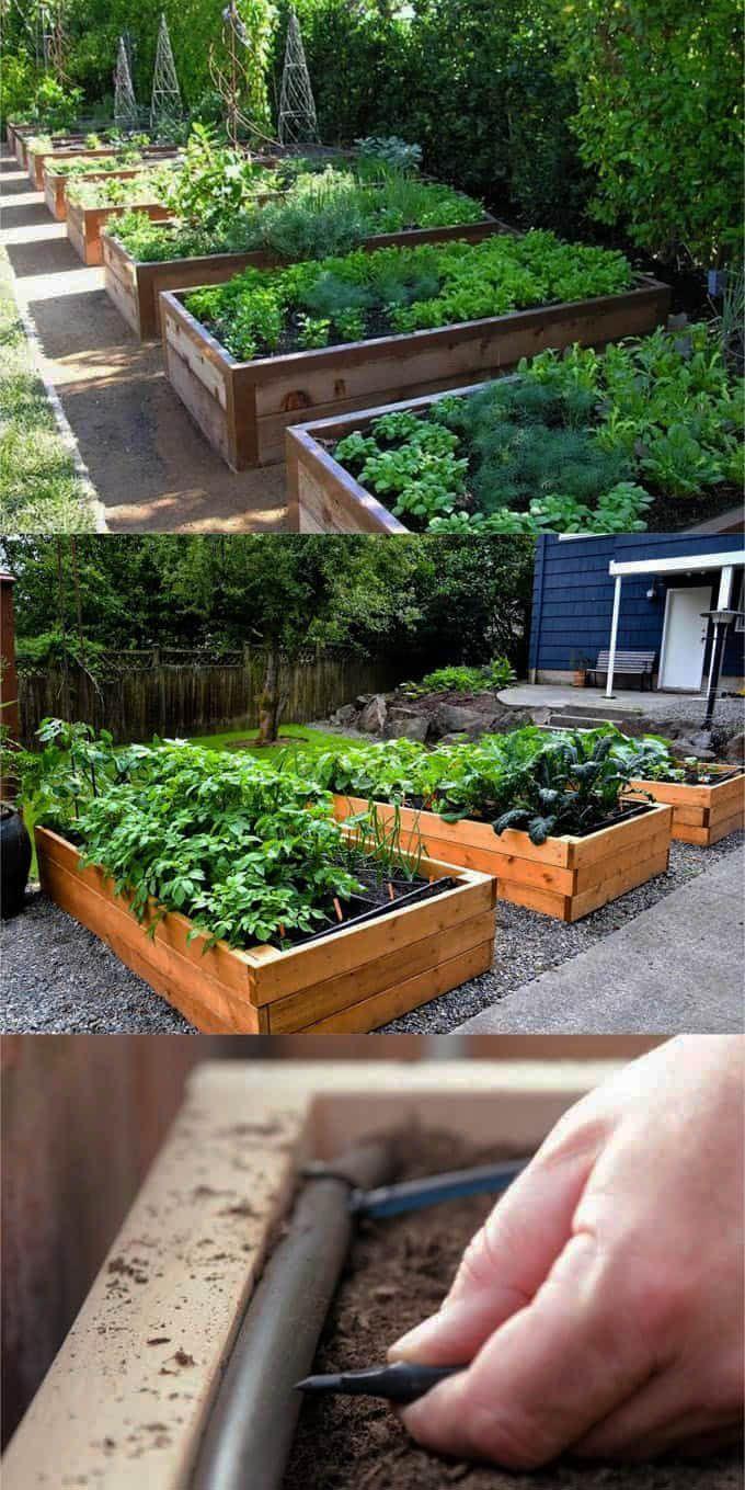 Finest Aldi Raised Garden Bed 2017 Made Easy Diy Raised Garden Vegetable Garden Raised Beds Vegetable Garden Beds