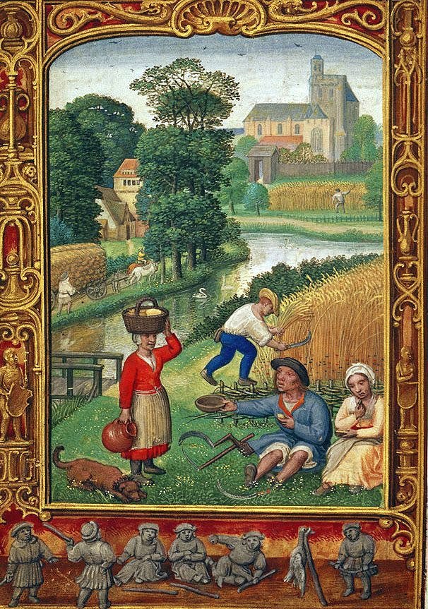 The Harvest in August, Add. 24098 f.25v, 1520-1530, Simon Bening, Flemish