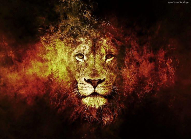 Głowa, Lwa, Ogień