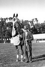 Phar Lap in his travelling gear with Tommy Woodcock.