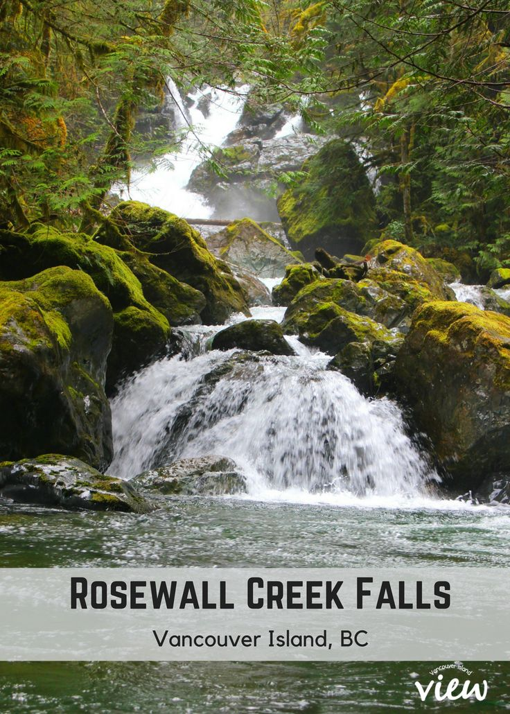 Rosewall Creek Falls is one of the many accessible (and truly magnificent) waterfalls found on Vancouver Island. If you are planning a trip to VI soon, make sure this hike is on your list!