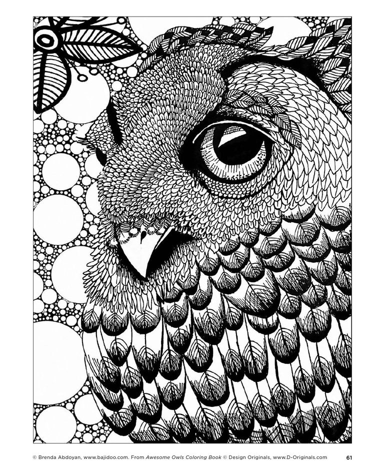 Awesome Owls Coloring Book By Fox Chapel Publishing   Issuu