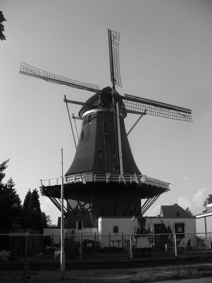 St. Anna Molen Wind Mill Nijmegen, The Netherlands